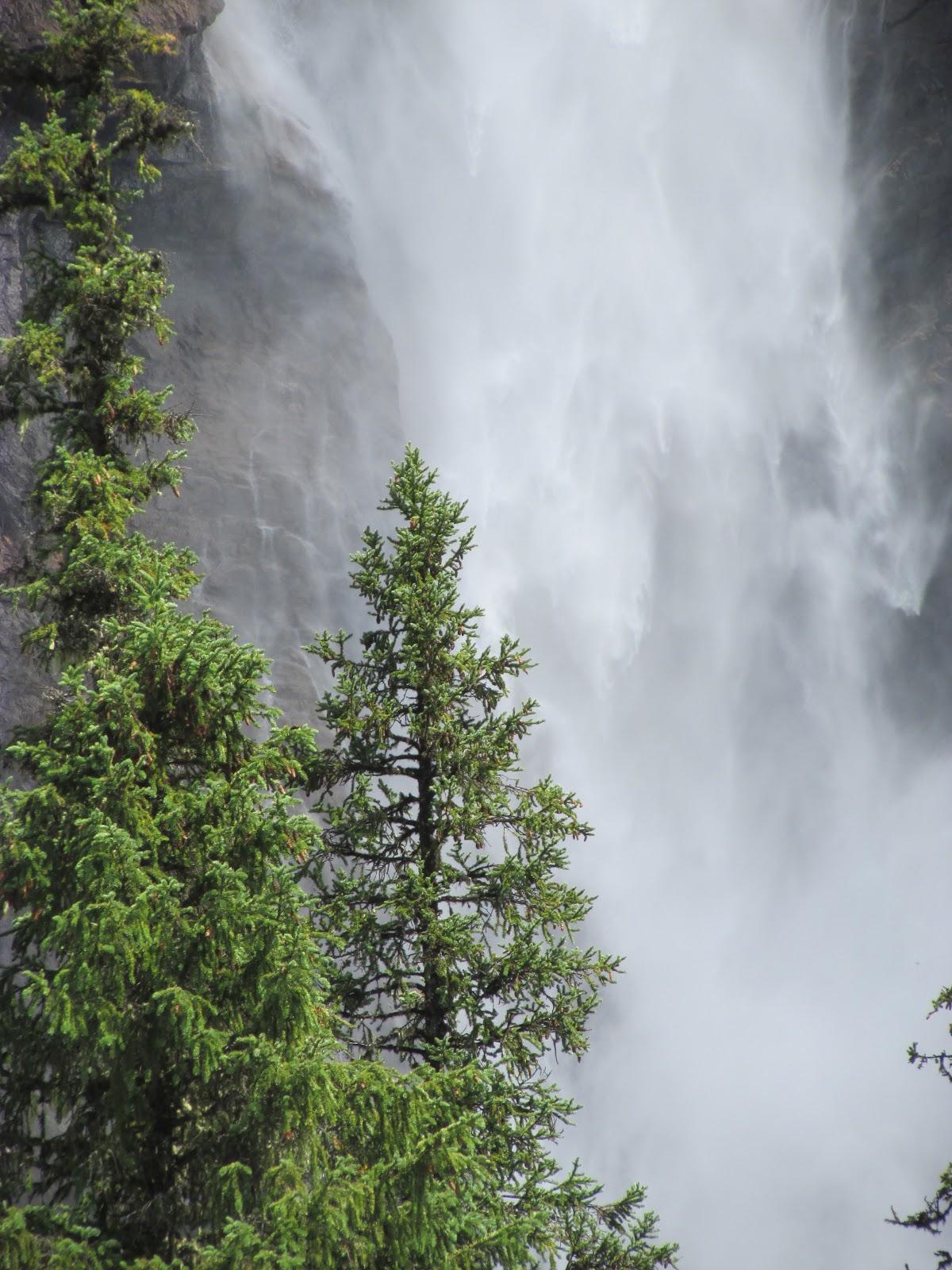 Takakkaw Falls | Akinokiki