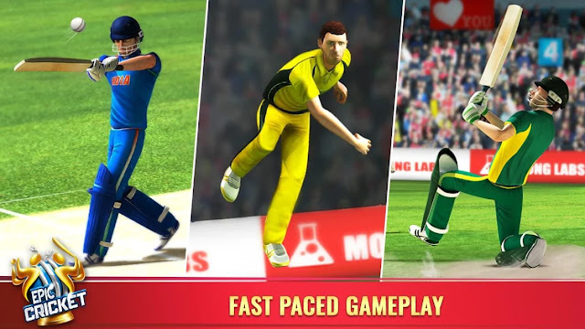 Epic Cricket 2019 Update
