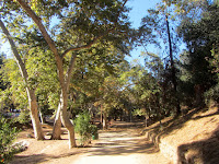 Walking north through Ferndell picnic area, Griffith Park