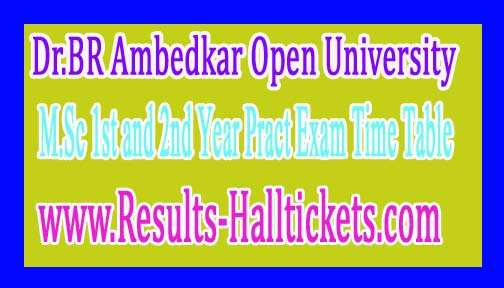 Dr.BR Ambedkar Open University M.Sc 1st and 2nd Year Pract Exam Time Table