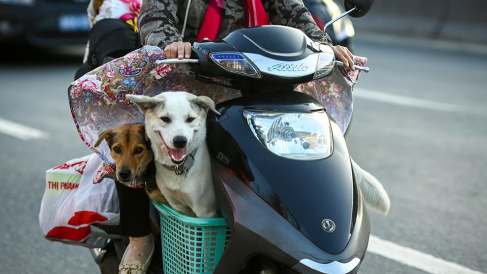 Người dân lỉnh kỉnh đồ đạc trở về Sài Gòn dưới cái nắng 35 độ C