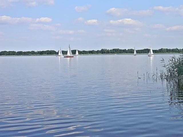 woda, wypoczynek, sporty wodne, las