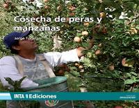 cosecha-de-peras-y-manzanas
