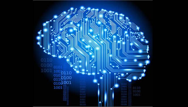 Cérebros terão versão digital dentro de 20 anos.