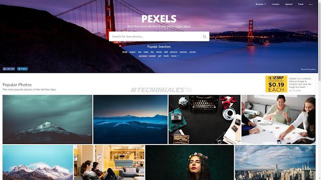 Pexels bajar fotos gratis
