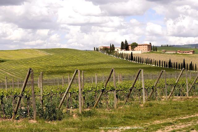 wiosna w Toskanii, okolice Greve in Chianti