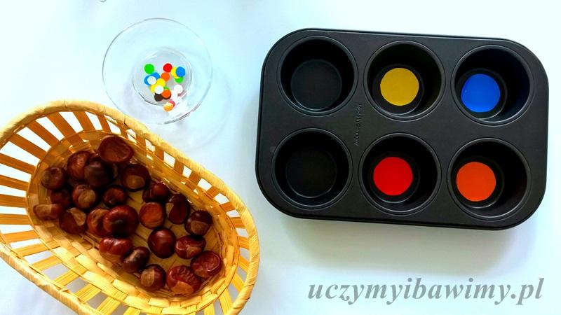 segregowanie według kolorów | zabawy z kasztanami | zabawy z szczypcami