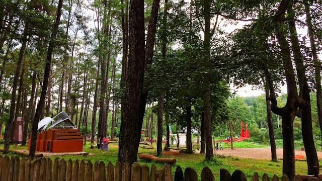 wisata alam punti kayu