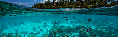Las Maldivas. Asia