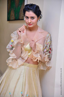 Payal Rajput at RX100 movie audio launch 25