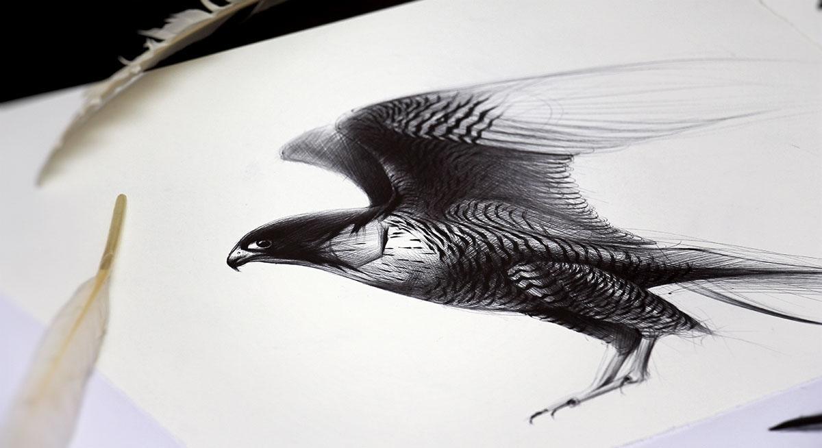 07-Eagle-Yelena-Yefimova-Animals-Drawn-with-Ballpoint-Pens-www-designstack-co