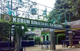 Ridwan Kamil Tegaskan Kebun Binatang Bandung Bukan Milik Pemkot