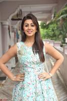 Nikki Galrani at Prema leela pelli gola trailer Launch ~  Exclusive 120.JPG