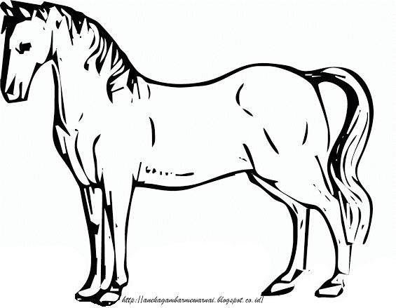 Gambar Mewarnai Kuda Untuk Anak PAUD dan TK 2