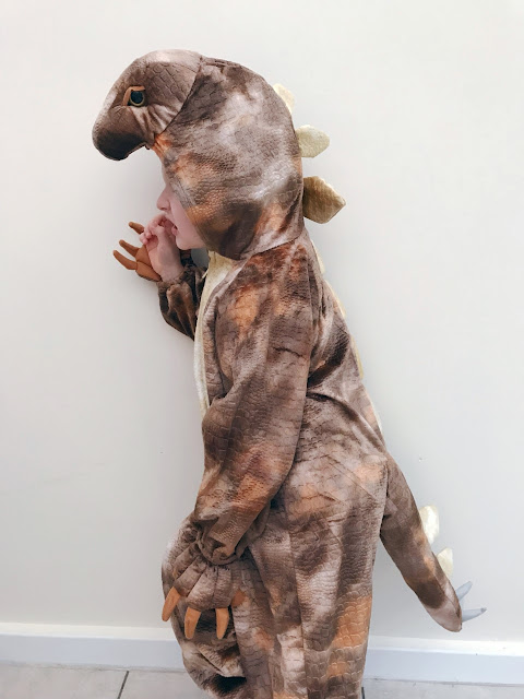 Side view of little boy dressed up as a dinosaur