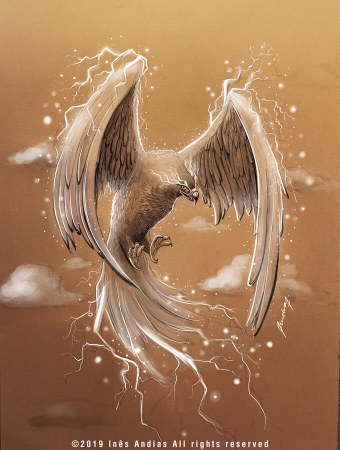 09-Thunderbird-Ines-Andias-www-designstack-co