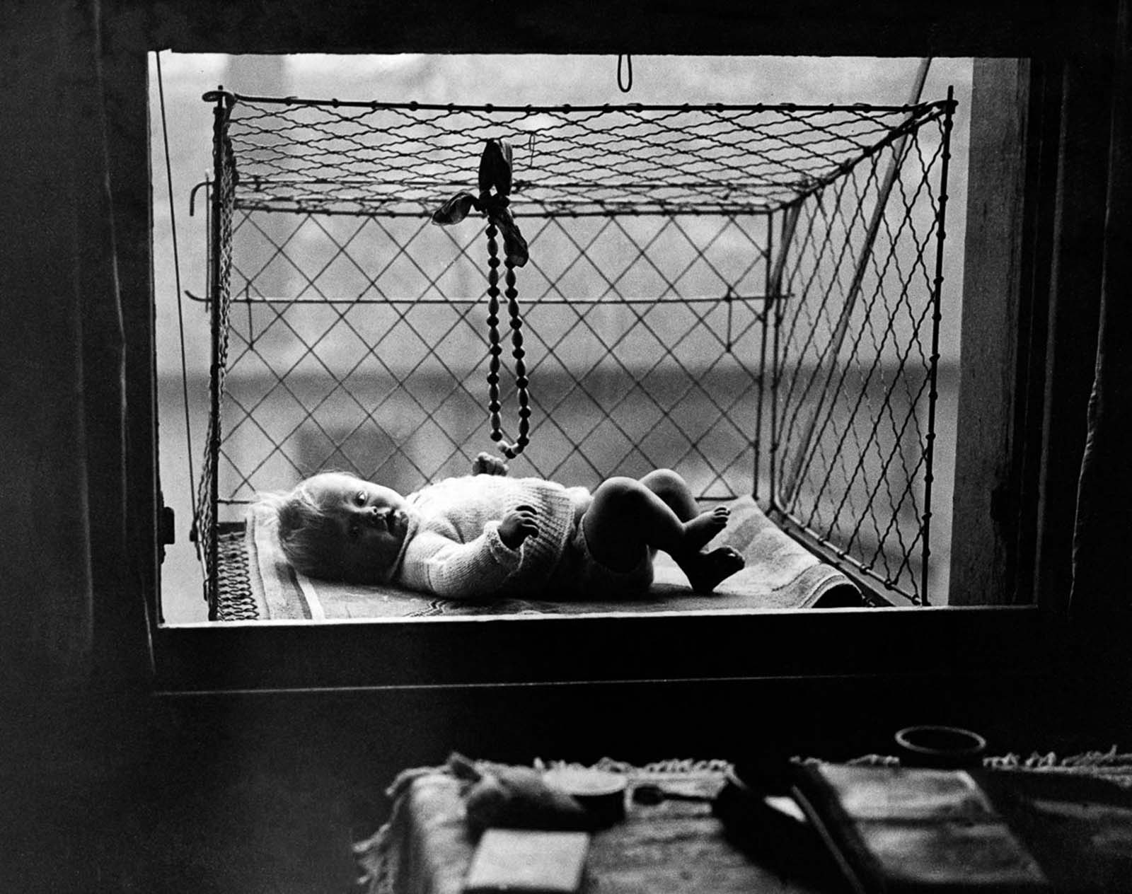 The cages became popular among apartment dwellers without access to backyards.
