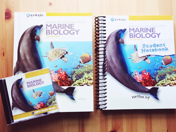 Marine Biology for the Ocean Loving Kid | Review