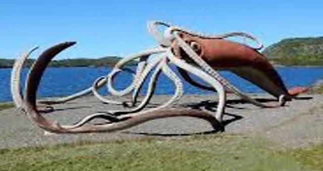 দশটি হাত এমনকি নীল তিমি যাদের প্রধান খাদ্য। Giant squid has ten hands.