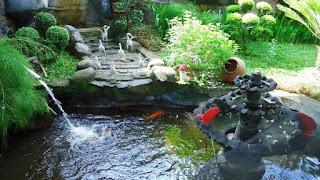 Model Kolam Ikan Minimalis Sederhana Terbaik dan Terbaru
