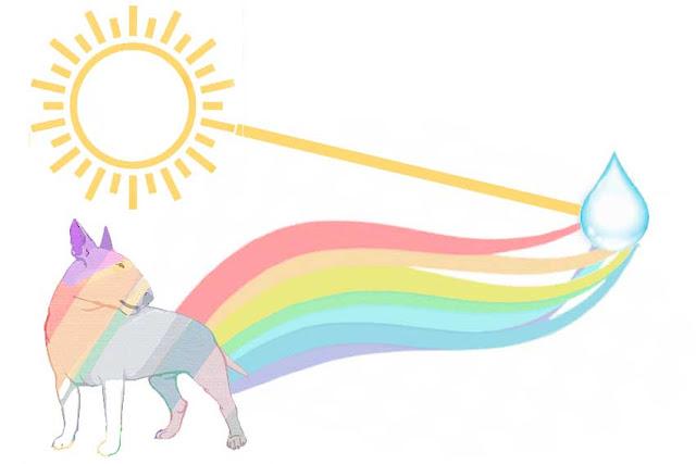 el sol reflejado en una gota de lluvia forma el arcoiris