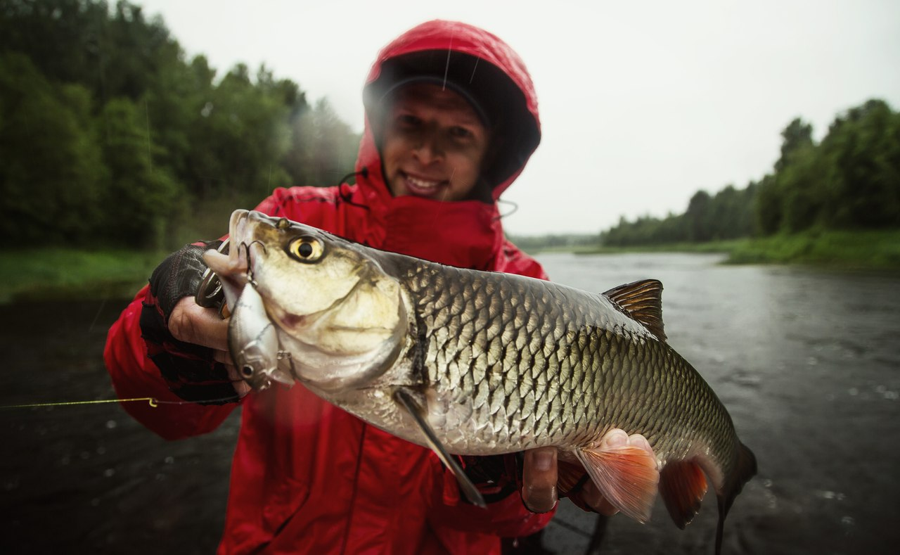 Рыбалка в вологодская область