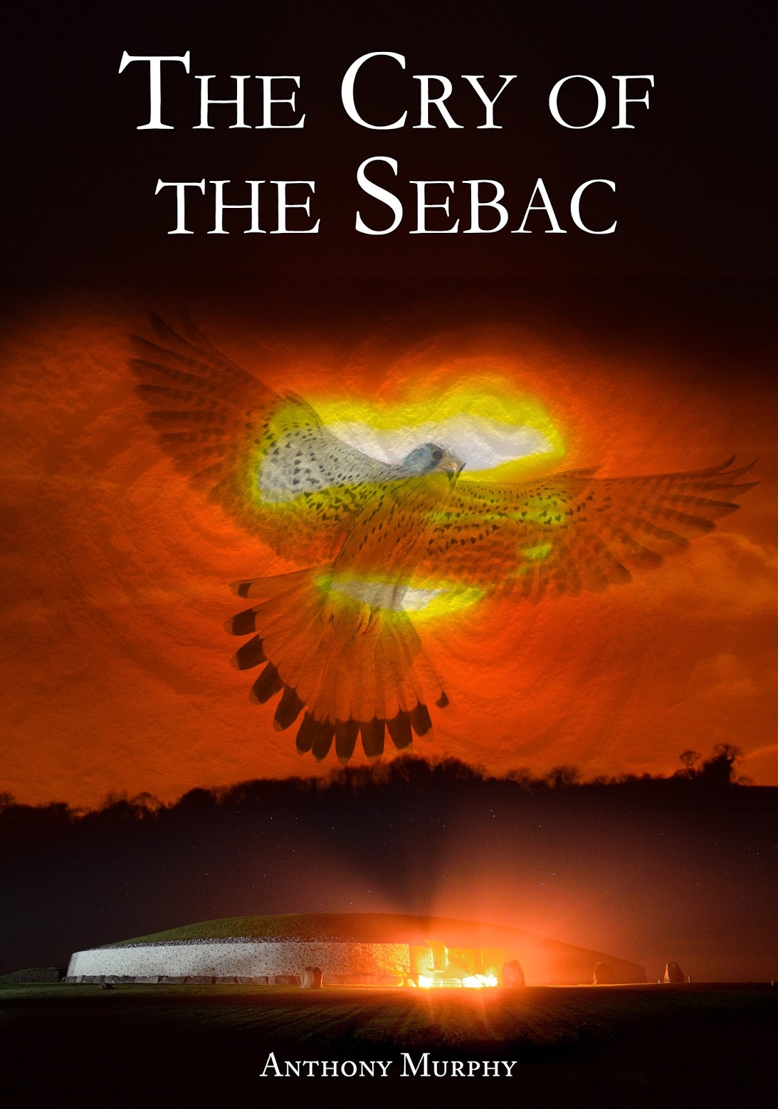 Mythical Ireland blog: My new novel 'The Cry of the Sebac