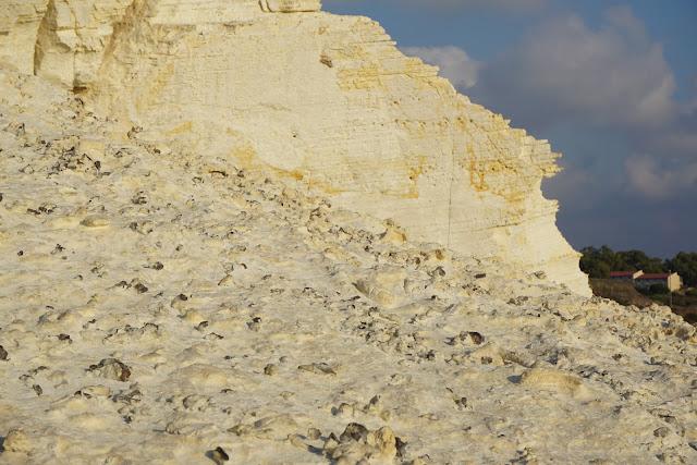 מאובנים על רכס בראש הנקרה