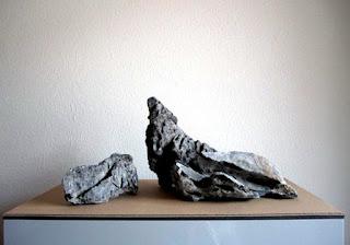 Seiryu Stone Jenis Batu Aquascape yang Bagus