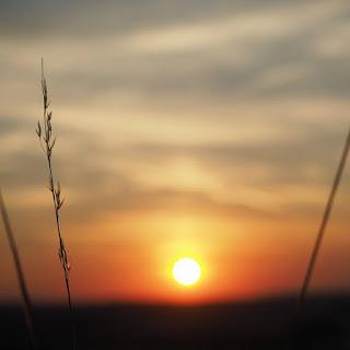 sonnenuntergang-sommer