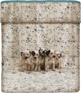 Funny Dogs. Bassetti Imagine. Cubrecama acolchado