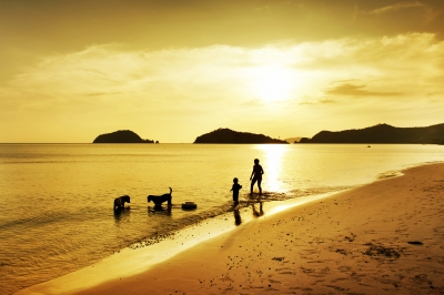 Familia-na-praia-com-dois-caes