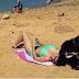 Como é difícil apanhar banhos de sol quando esta mulher esta acompanhada pelo seu labrador