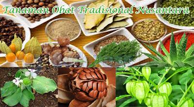 Tanaman Obat tradisional alami indonesia