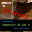 Attack of the Killer Mold!!