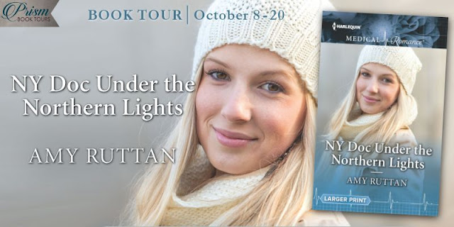 NY Doc Under the Northern Lights tour banner