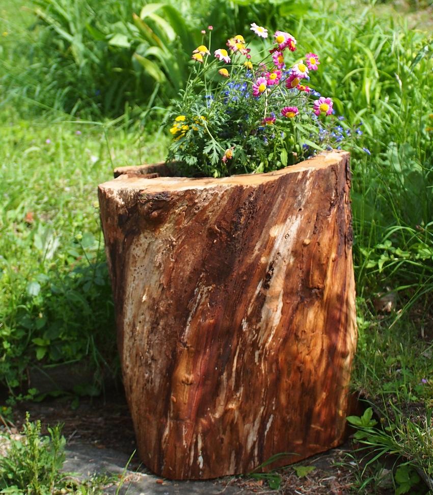 Des tron ons d 39 arbre comme bac fleurs un atelier au fond des bois - Arbre fruitier comme bois de chauffage ...