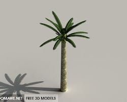 Palm Tree 3D Model Free Download - 3 - Free 3D Models