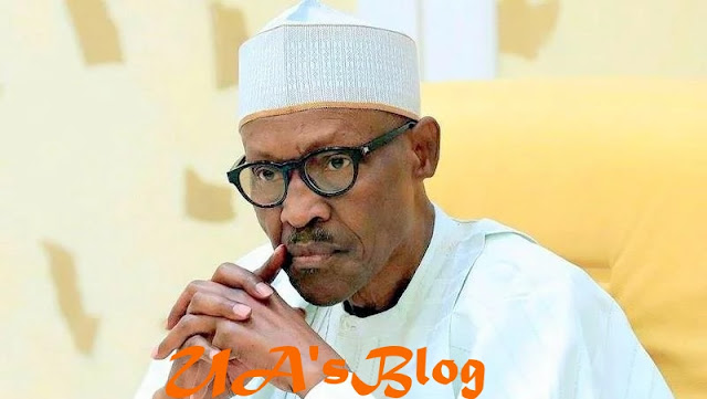 We Did Not Predict That Buhari Will Win 2019 Election - US Institute Denies Report