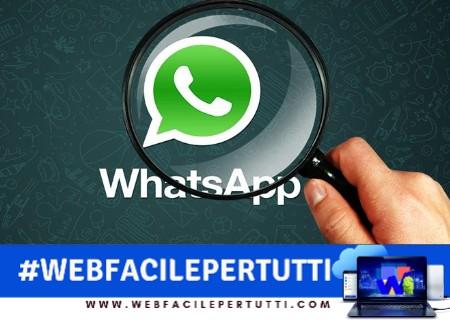 WhatsApp | Ecco il metodo per spiare le storie degli amici in completo anonimato
