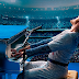 """Precisamos falar sobre """"Rocketman"""", cinebiografia de Elton John estrelada por Taron Egerton"""