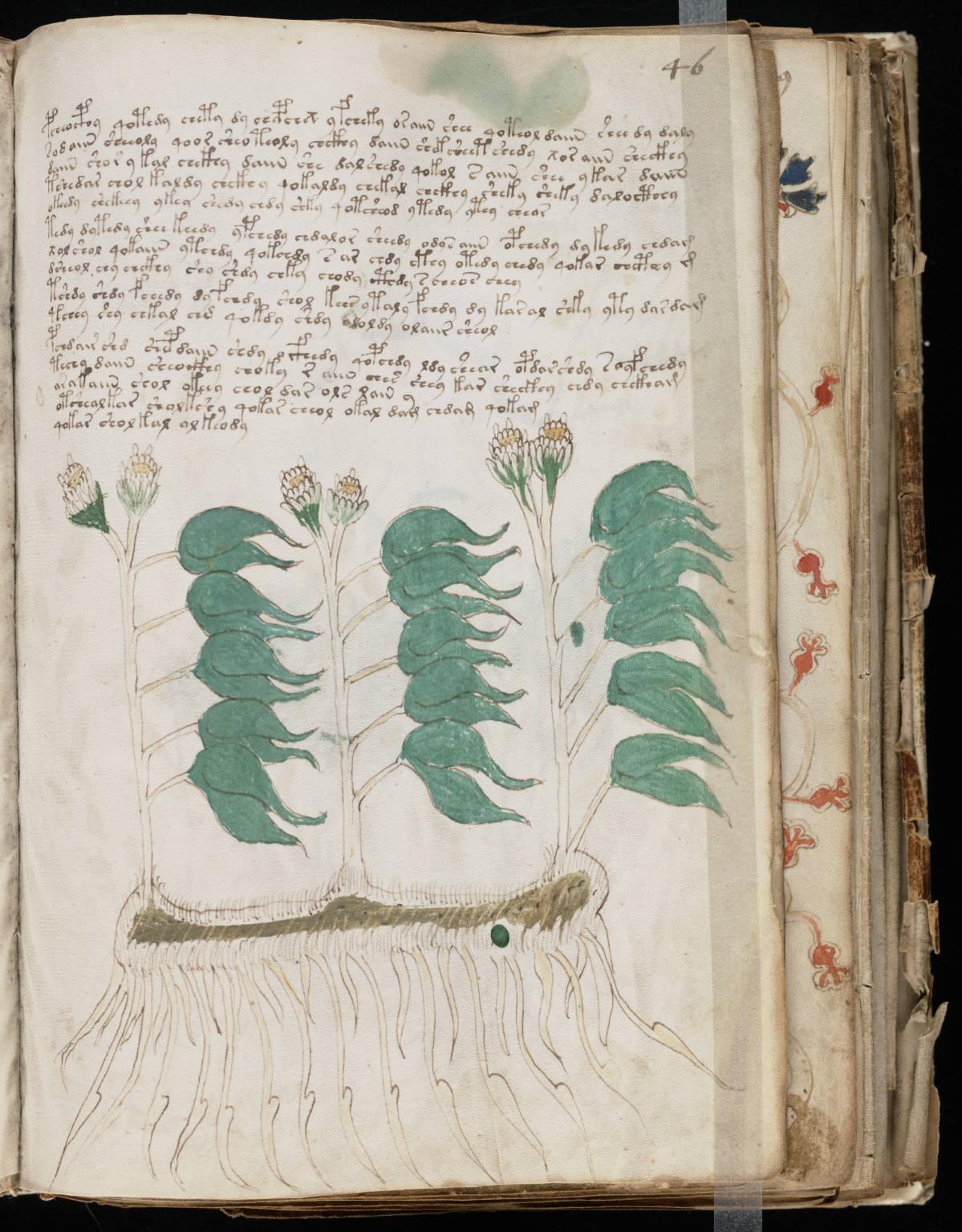 manuscrito089