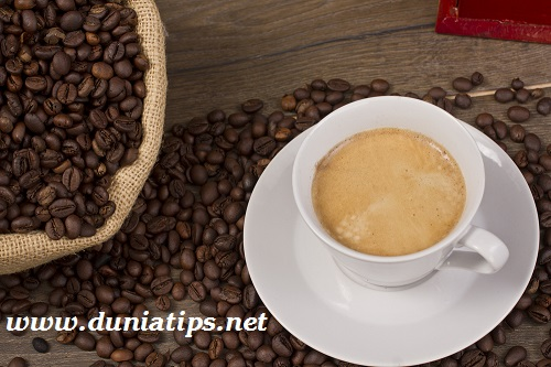 Kopi Kuat Cordyco Coffee Untuk Stamina Pria