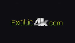 free accounts of exotic4k here hacked premium access