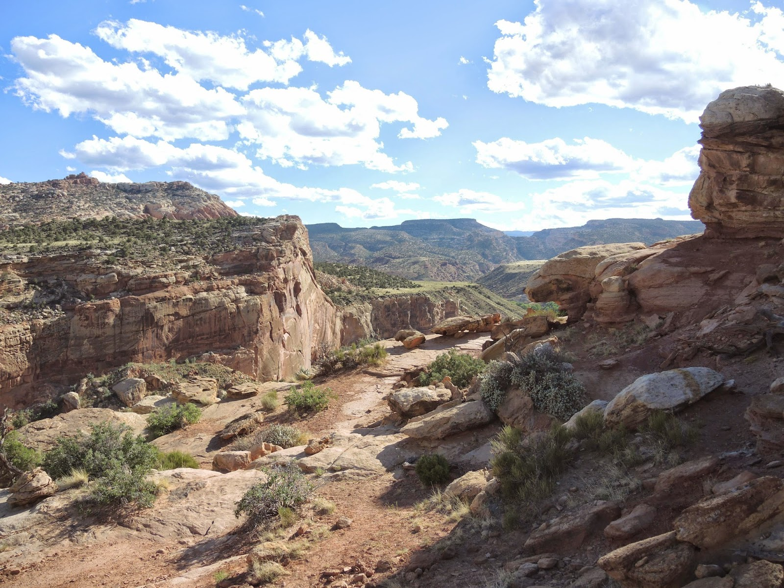 Capitol Reef National Park 24