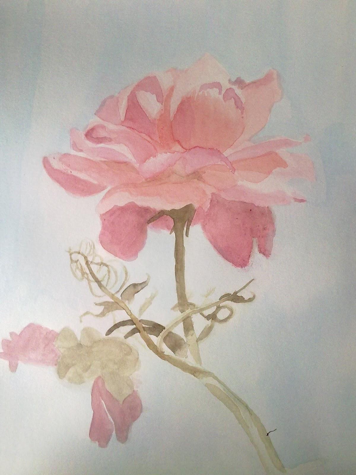 Clases de dibujo y pintura en La Corua
