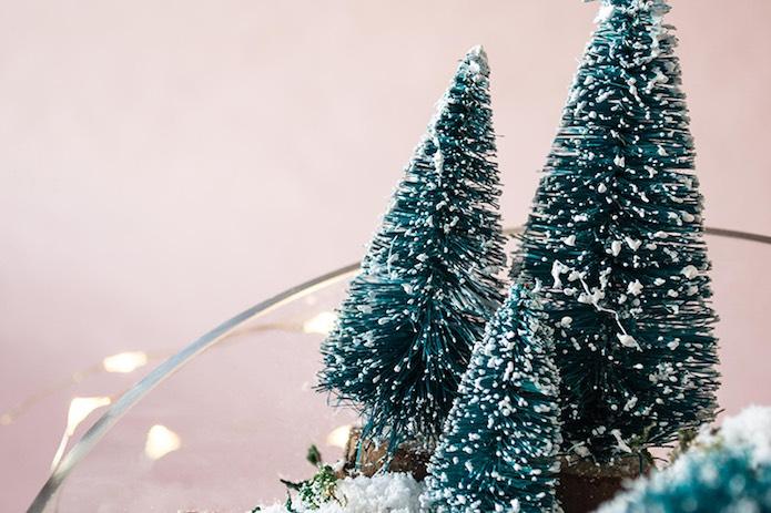 árboles pequeños dentro de un bol en navidad