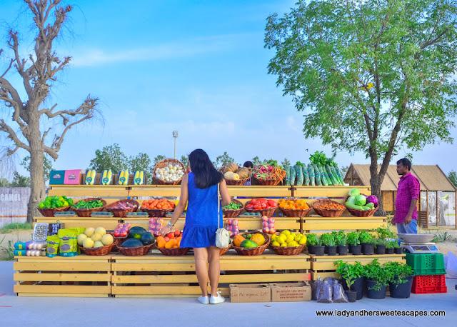 organic market in The Yard Last Exit Dubai