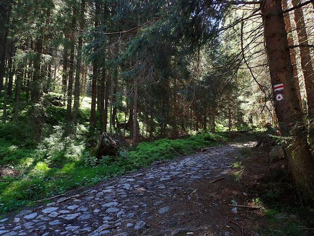 Z polany Trzydniówka wiedzie szlak na Trzydniowiański Wierch