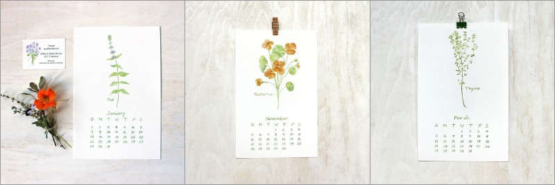 Images from 2017 Herbs and Edible Flowers calendar by Trowel and Paintbrush